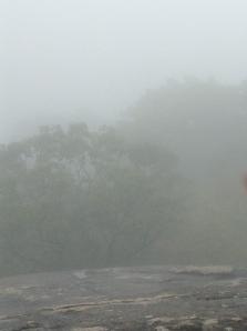 Fog on Carris Hill Oct. 2013
