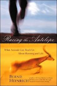 Racing the Antelope cover